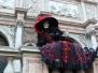 Carnival of Venice: Catalin Costin - Bucharest (Romania)